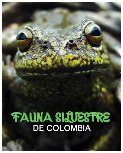 COVER_FAUNA