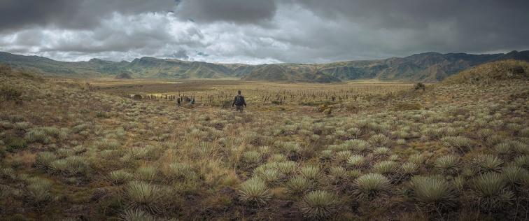 Panorama Monquetiva - Joseph Hernandez